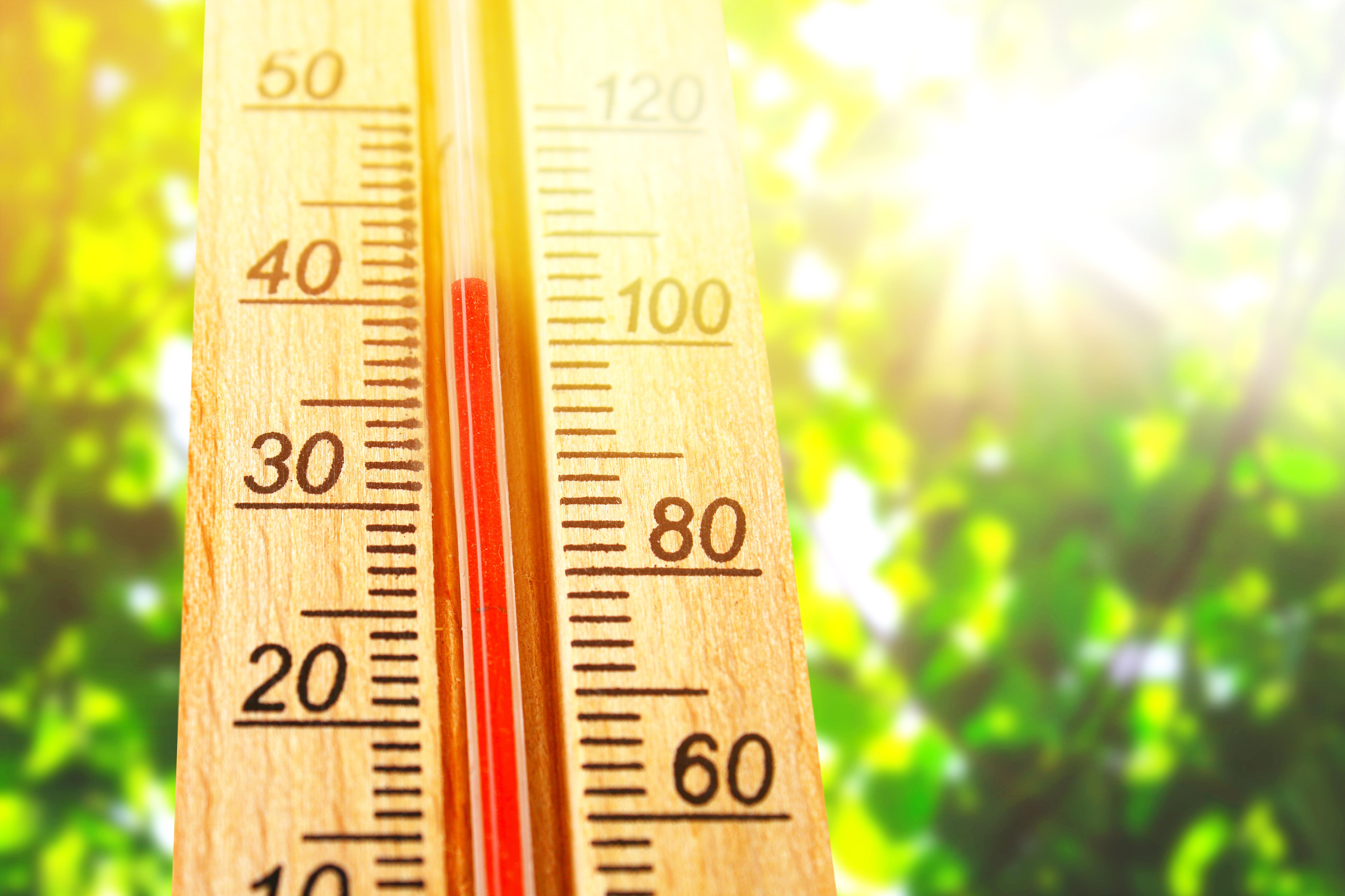 Es fundamental saber reconocer los síntomas para poder actuar a tiempo en caso de insolación u ola de calor.